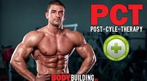 Blog Body-building Ws