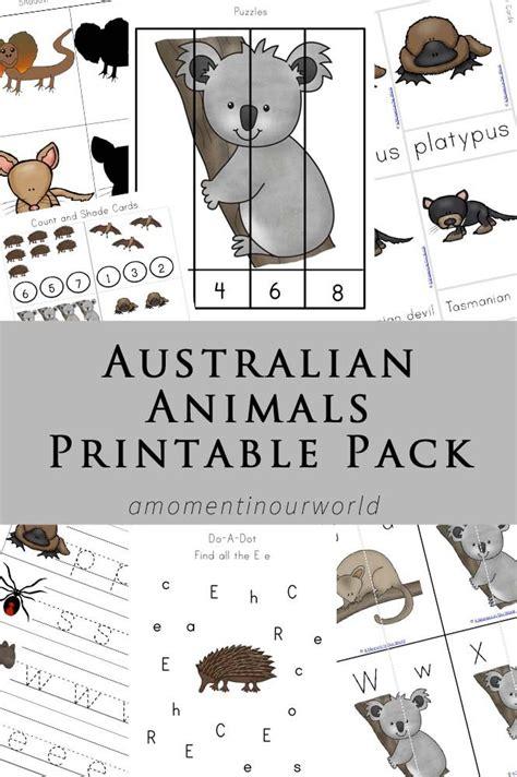 australian animals printable pack australian animals