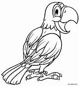 Parrot Coloring Pages Adults Printable Cockatiel Parrots Realistic Bird Cool2bkids Fish Colouring Sheets Getcolorings Adult Designlooter Getdrawings Results 78kb 750px sketch template