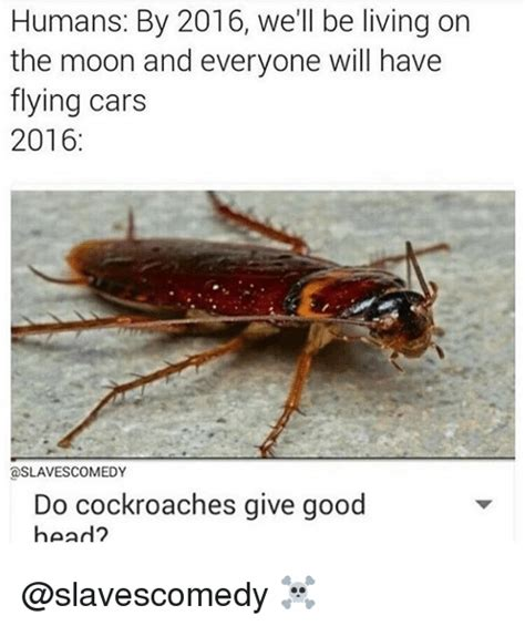 Flying Cockroach Meme - humans by 2016 we ll be living on the moon and everyone will have flying cars 2016 a slaves