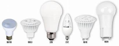 Led Lighting Anatomy Types Bulb Bulbs Base