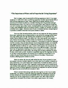 Healthy Food Essays Essay On Save Water In Marathi Online Technical Schools also English Essay Sample Essays On Save Water The Giver Assignments Essay On Safe Drinking  How To Write A Proposal Essay