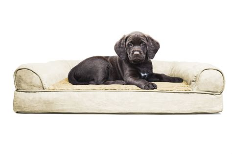 extra large dog sofa bed large dog sofa bed extra large dog bed orthopedic foam xl