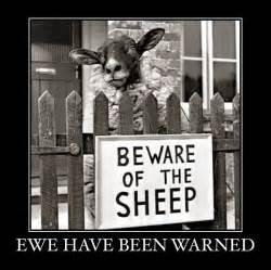 sayings for wedding signs sheep ewe warning sign joke pictures