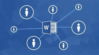 Word Microsoft Collaboration Document Collaborate Basics Others