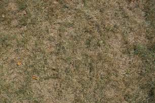 High Res Ground Texture