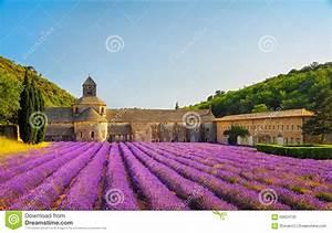 Prix De La Lavande : l 39 abbaye de la lavande de floraison de senanque fleurit ~ Premium-room.com Idées de Décoration