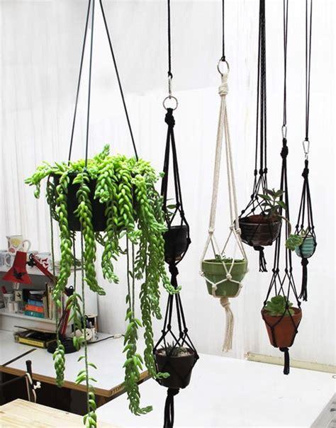 9 id 233 es pour cr 233 er une suspension de plantes simples et