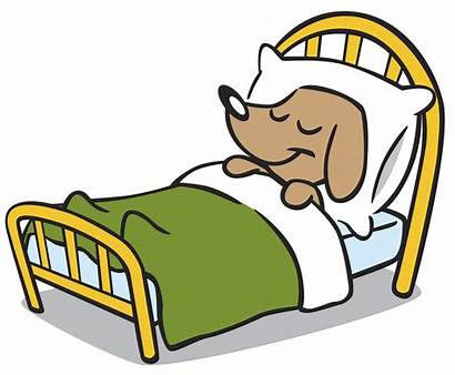 Sleeping Cartoon Clip Bed Clipart