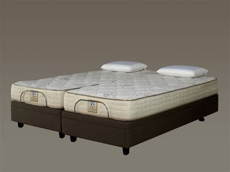 Sealy Adjustable Beds by Sealy Adjustable King Bed Designer Series Beds