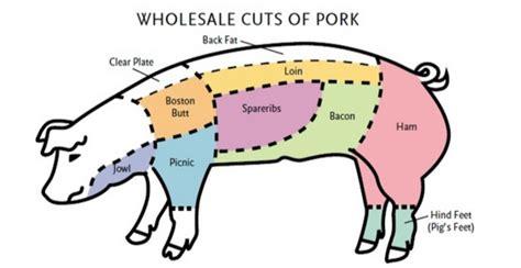 whats  difference  pork shoulder pork shoulder