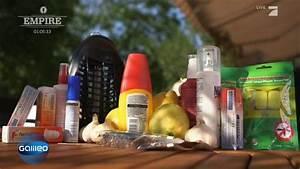 Was Hilft Gegen Wühlmäuse : was hilft gegen stechm cken ~ Lizthompson.info Haus und Dekorationen