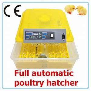 Cheap Price Mini Incubator Chicken Egg Incubator 48 Eggs