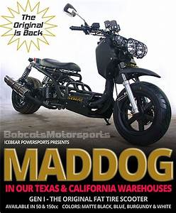 Ice Bear  U0026quot Maddog U0026quot  50cc Street Bike With 12 U0026quot  Big Tires