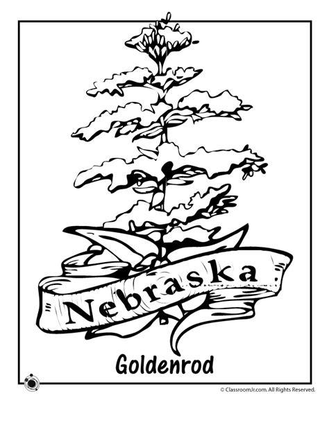 nebraska state flower coloring page woo jr kids activities