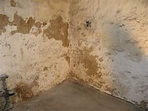 Feuchtigkeit In Der Wand Was Tun : feuchtigkeit wand in schleswig holstein nbg ~ Sanjose-hotels-ca.com Haus und Dekorationen