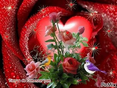 Flores Picmix