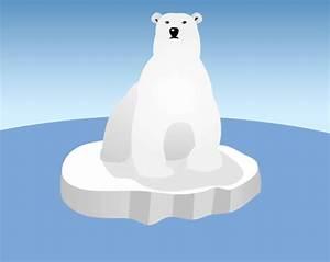 Polar Bear Blubber - Science Fun