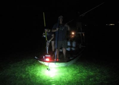 underwater fishing lights fishnlight s bl200 and dc100 underwater fishing lights