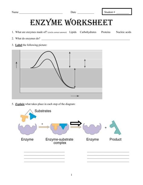 Best Enzyme Activity Ideas And Images On Bing Find What You Ll Love