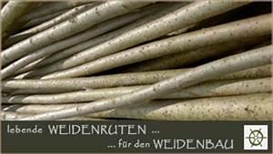 Weidenruten Zum Flechten Kaufen : weidenshop cabana news ~ Orissabook.com Haus und Dekorationen