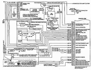 3100 Heui Engine Harness Wiring Diagram  U2013 3116