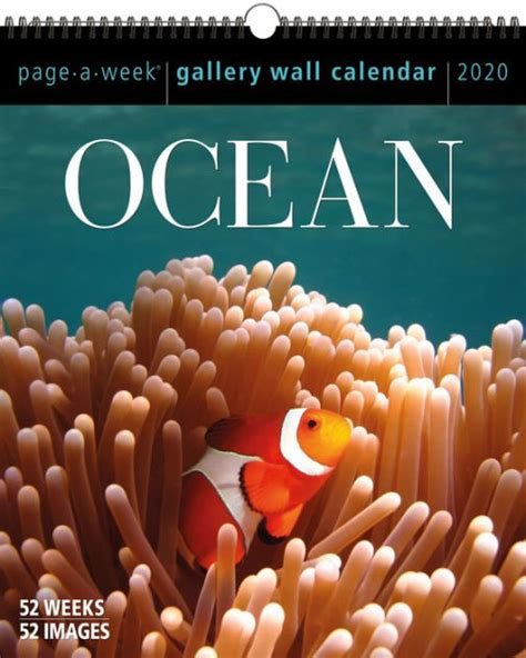 ocean page week gallery wall calendar workman publishing