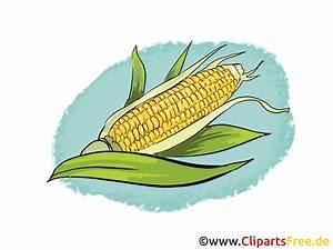 Nutzungsrechte Illustration Berechnen : mais illustration bild clipart gratis ~ Themetempest.com Abrechnung