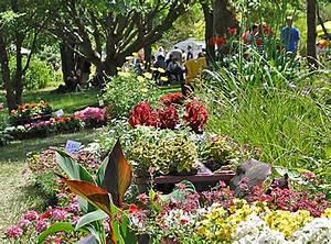 Blumen Im Garten : das marburger online magazin bl ten blumen und pflanzen im botanischen garten beim pflanzenmarkt ~ Bigdaddyawards.com Haus und Dekorationen