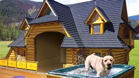 luxurious dog houses cutest    life youtube dog house diy dog mansion