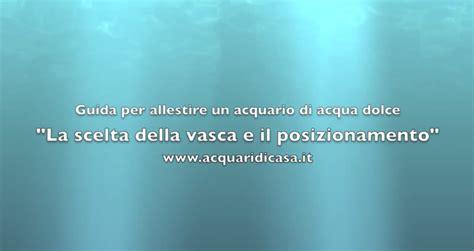 Ghiaia Per Acquario Acqua Dolce by Ghiaia Per Acquario Acqua Dolce Affordable Line