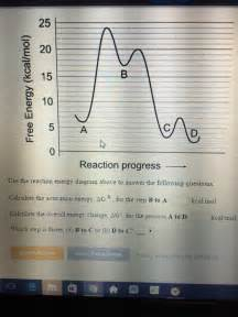Use The Reaction Energy Diagram Above To Answer The