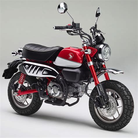 2019 Honda Trail Bikes by 2019 Honda Monkey Look 9 Fast Facts