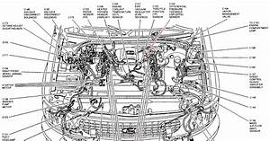28 1999 Ford Expedition Vacuum Hose Diagram