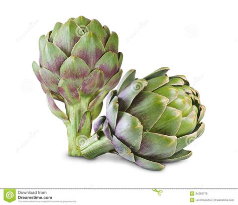 Images Of Artichokes Artichoke Royalty Free Stock Photos Image 34262778