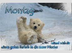 BerlinBrandenburger im Winter Page 2 Mein schöner