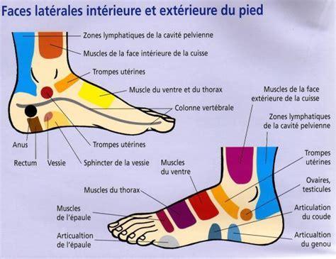 douleur exterieur du pied droit ad astra mode d utilisation des huiles essentielles ii voie externe