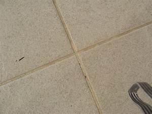 Joint De Carrelage Sol : suintement joints de carrelage sur terrasse 13 messages ~ Dode.kayakingforconservation.com Idées de Décoration