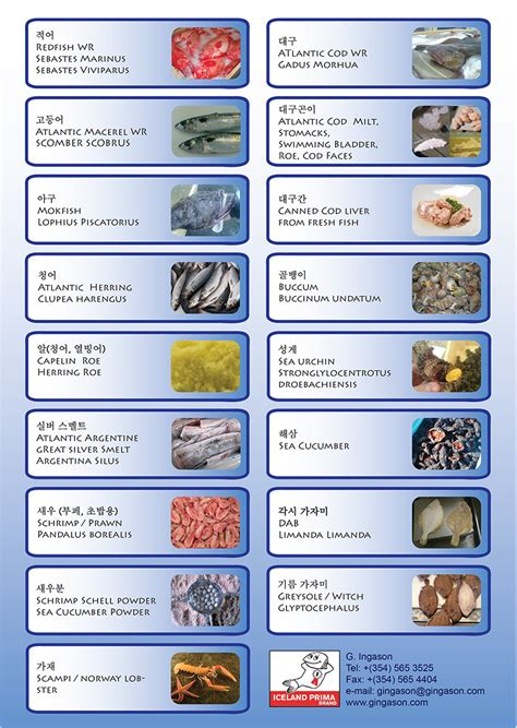 sea food list foodstutorialorg