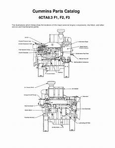 8 3 Cummins Fuel Shutoff Solenoid Wiring Diagram