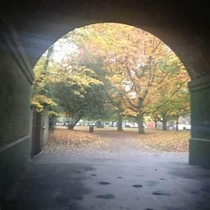 Ravenscourt Park - Ravenscourt Park