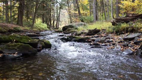 Free Water Stream Stock Video Footage - Vidsplay.com