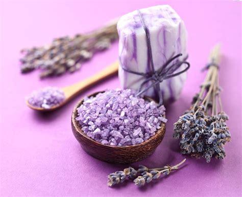 fiore di lavanda fiori lavanda lavanda propriet 224 benefiche dei fiori di