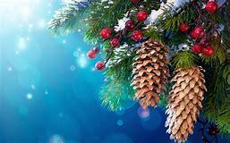 Afbeeldingsresultaten voor kerst