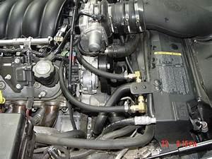 Ls2 Pcv System Diagram  Photo Needed