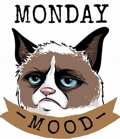 Monday Mood Demo Shirt