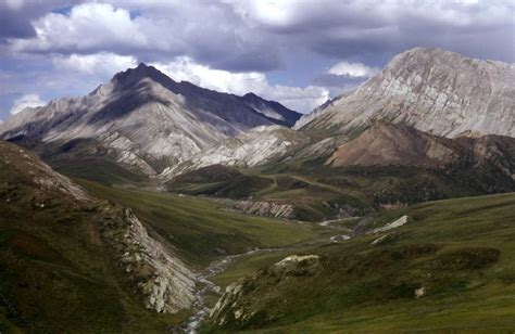 Pristine Mountain Habitats Are Also Not Safe From Climate