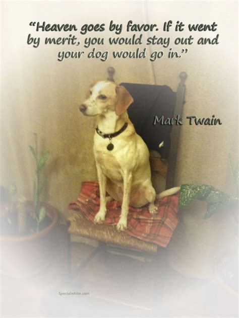 quoting mark twain  darcys adventures