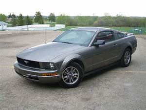 2005 Ford Mustang - Pictures - CarGurus