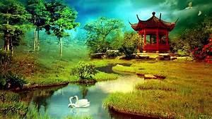 Beautiful, Nature, Wallpaper